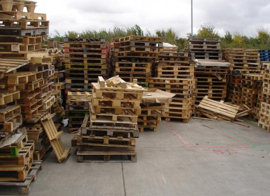 Pallet Procurement / Buying